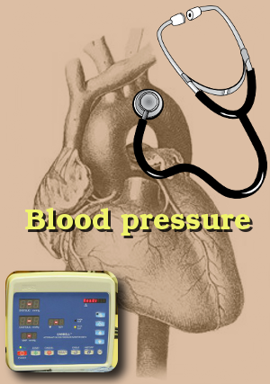 veterinary blood pressure at the Windsor Animal Clinic